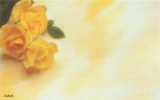 Floral Enclosure Card - 3 yellow roses