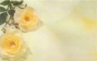 Floral Enclosure Card - yellow roses