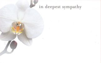 In Deepest Sympathy - white orchid