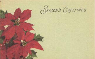 Season's Greetings - poinsettia